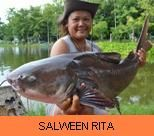 Photo Gallery - Salween Rita