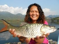 Jungle Perch Khao Laem Dam
