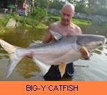 Photo Gallery - Big-Y Catfish