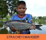 Photo Galerry - Stracheyi Mahseer