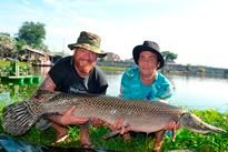 Thai Fish Species - Alligator Gar