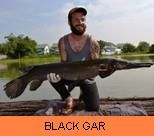 Photo Gallery - Black Gar