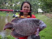 Giant Gourami IGFA All Tackle Record 9.05kg
