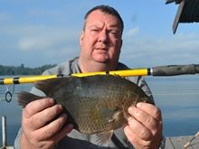 Nandid Perch IGFA All Tackle Record 0.90kg