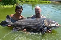 Fishing in Thailand - Siamese Carp