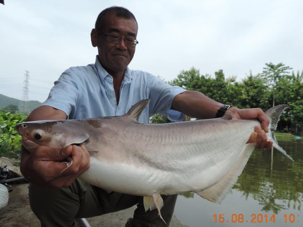 ... Catfish Shark - Photos Gallery of Anglers on Fishing Adventure