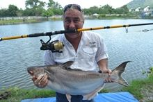 Thai Catfish Shark IGFA All Tackle Record 11.05kg
