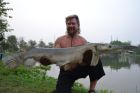Alligator Gar