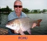 Photo Gallery - Rohu